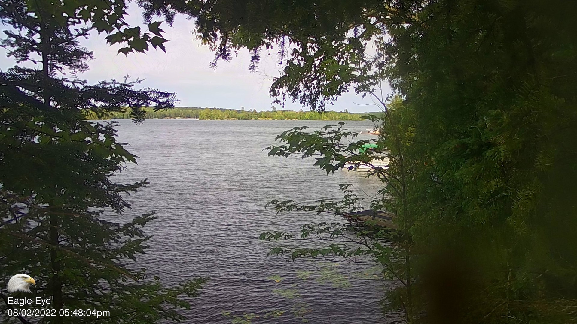 View of Lake Vermilion from near Cook Minnesota
